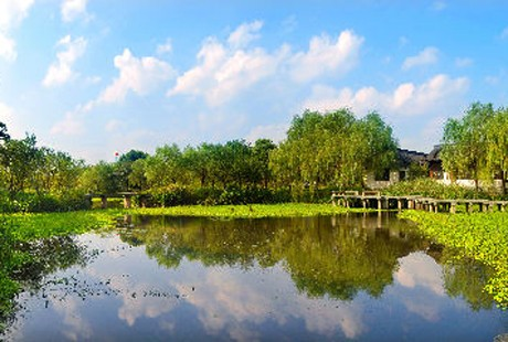 杭州-西溪濕地14