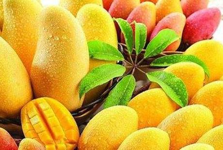 泰国-水果1