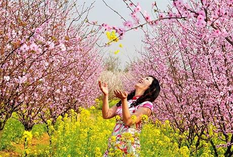 黄马凤凰沟 门票花儿朵朵、返璞归真、采摘草莓乐趣融融