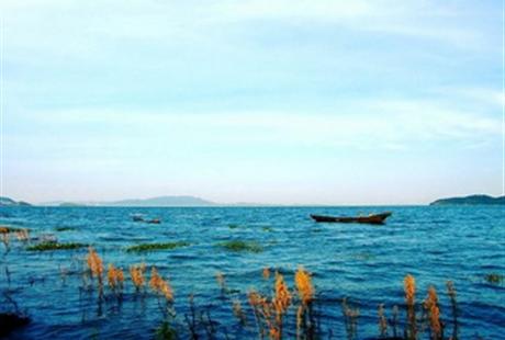 南昌到鄱陽湖一日游一湖清水,為世界守護,亞洲最大的濕地公園
